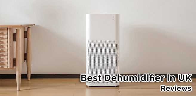 Best Dehumidifier Reviews